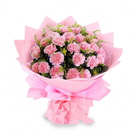 Flowers Delivery in IndorePink Carnation Bunch