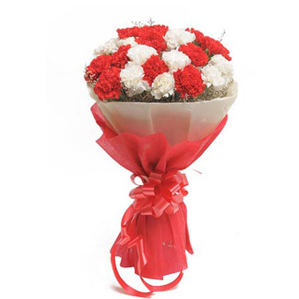 Flowers Delivery in CalcuttaRed & White Carnation Bunch