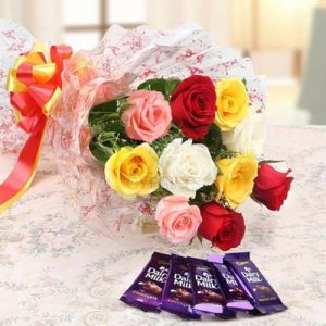 Flowers Delivery in BhilaiMix Roses Bunch & Dairy Milk Chocolate