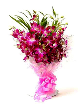 Flowers Delivery in FaridabadBunch of 10 Purple Orchid Bunch