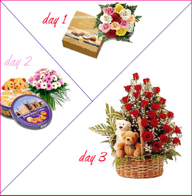 3 Days Package