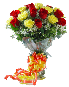 Flowers Delivery in BhilaiA Bunch of 2 dozen Roses