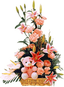 Lilly, Carnations beautifully arranged in a basket with a cute teddy