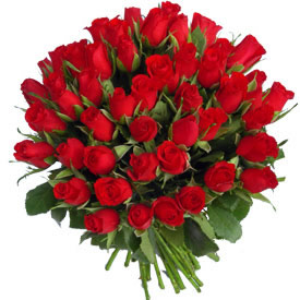 Flowers Delivery in BhilaiHand Bunch of 50 Roses