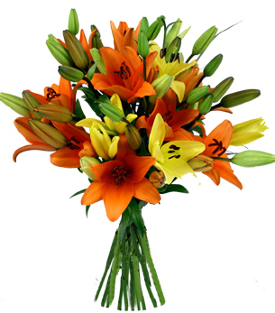 Flowers Delivery in BhilaiExotic bunch of mix Asiatic Lillium