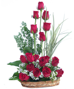 18 Red Roses arranged in a Basket