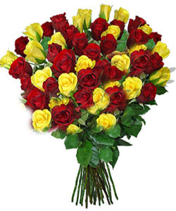 Flowers Delivery in BhilaiHand Bunch of 50 Mix Roses