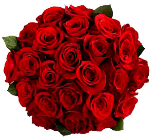 Bunch of 20 Red roses.